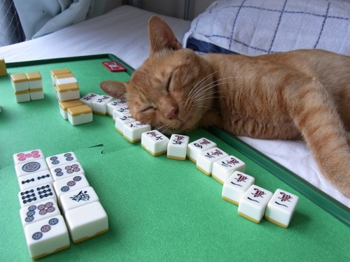 riichi-mahjong-neko-kun
